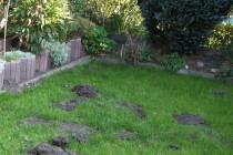 Landschaftsbau, Gartenbau, Maulwurfgitter